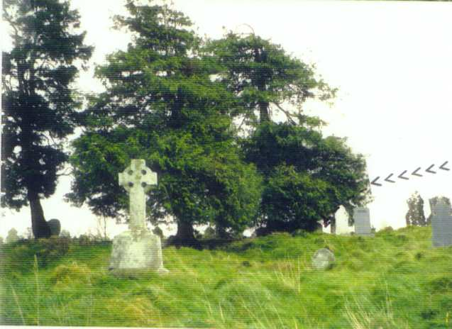 view of Rathbran churchyard, with arrows.jpg